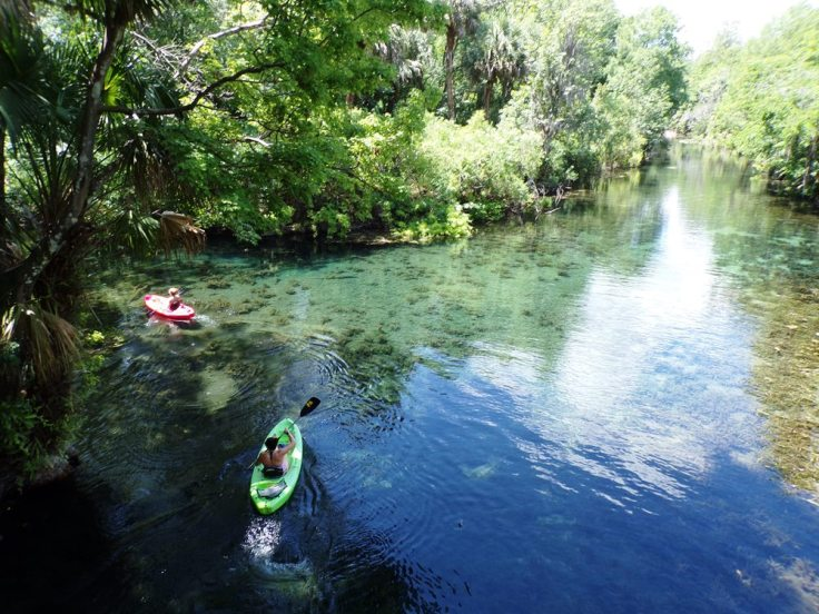 kayaking-silver-springs-min