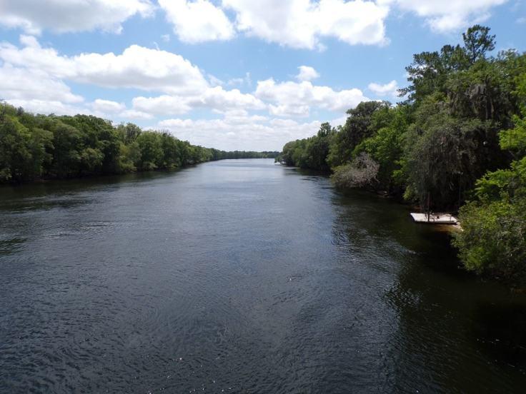 suwannee-river-min