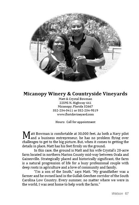 Micanopy-page67-min