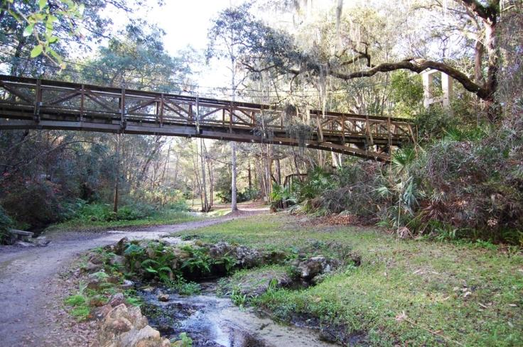 suspension-bridge-Ravine-State-ParkPalatka-min